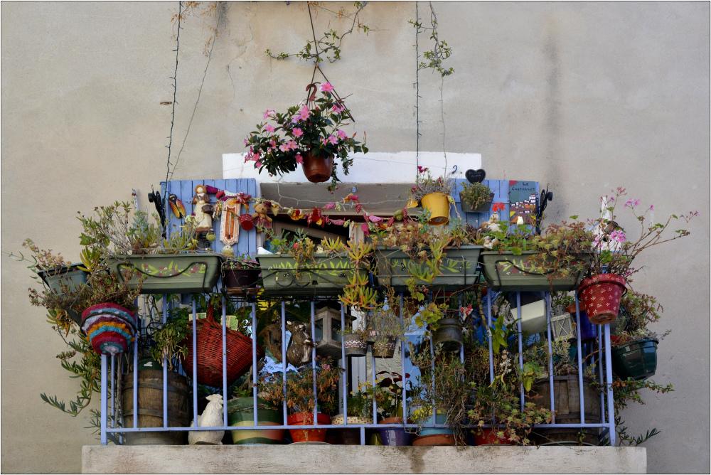 Jardin suspendu 2