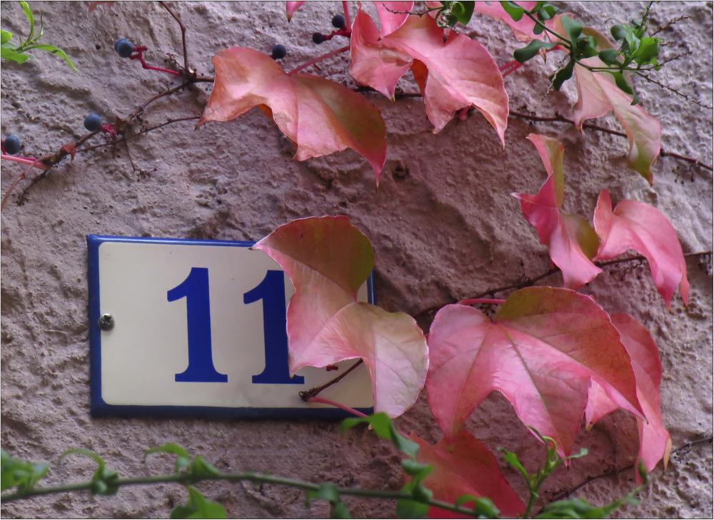 L'automne à la porte