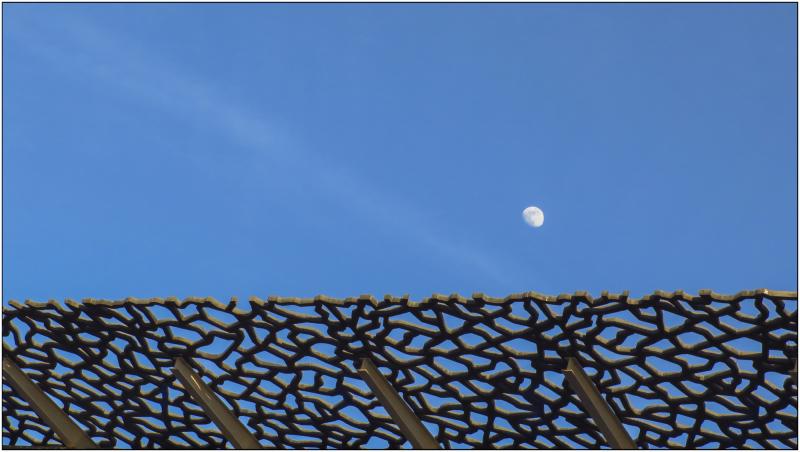La lune dans les filets