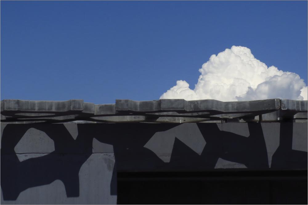 Mimétisme de formes