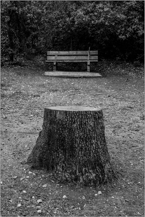 Banc de bois