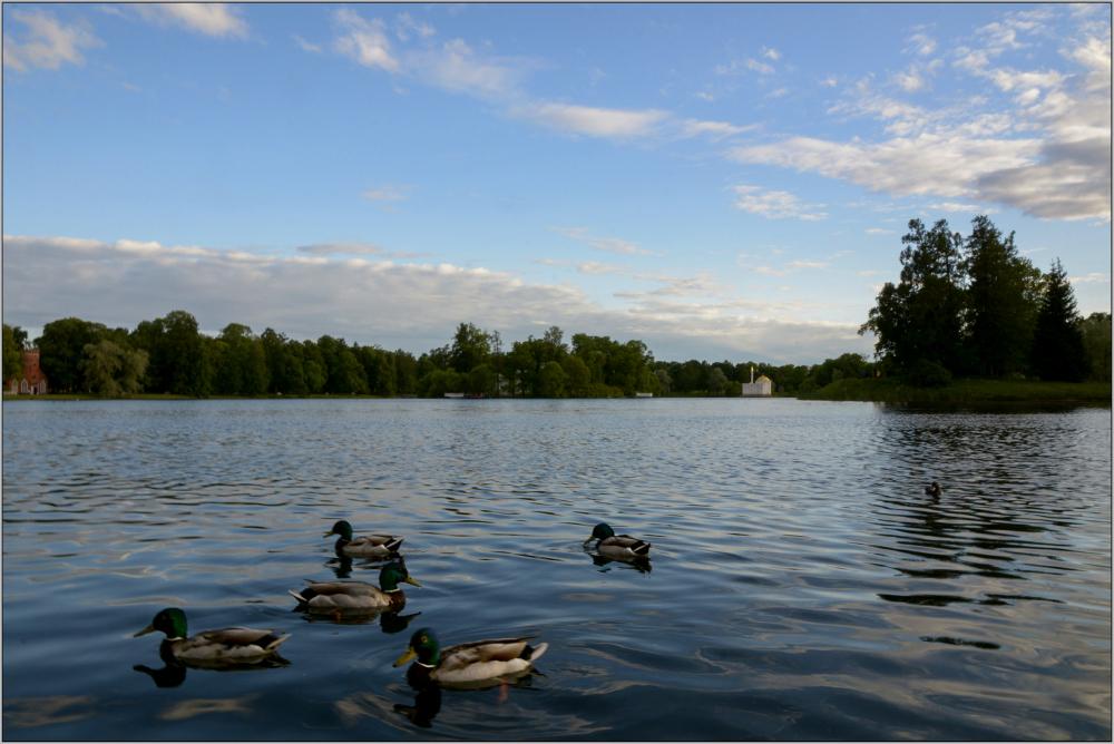 Crépuscule au lac