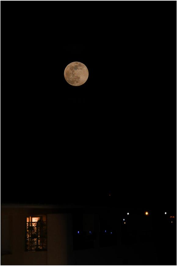 Sous la lune rose