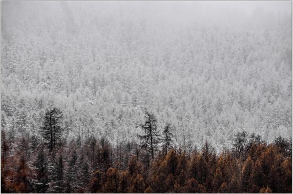 Limite pluie neige