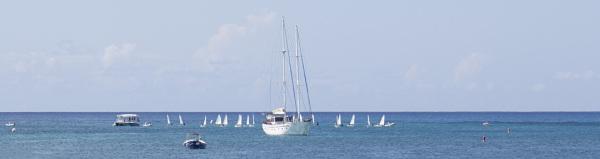 Sailing...minis too!