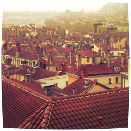 Les toits de Lyon