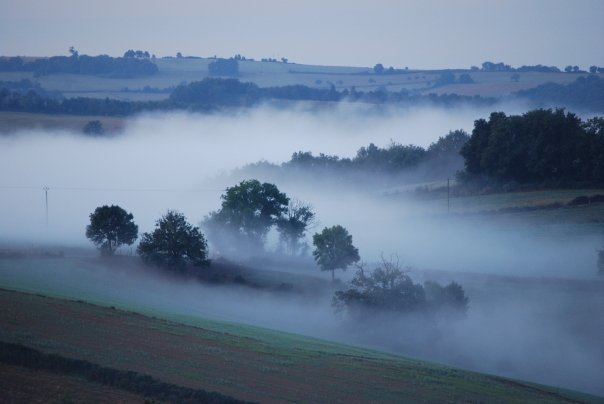french mist