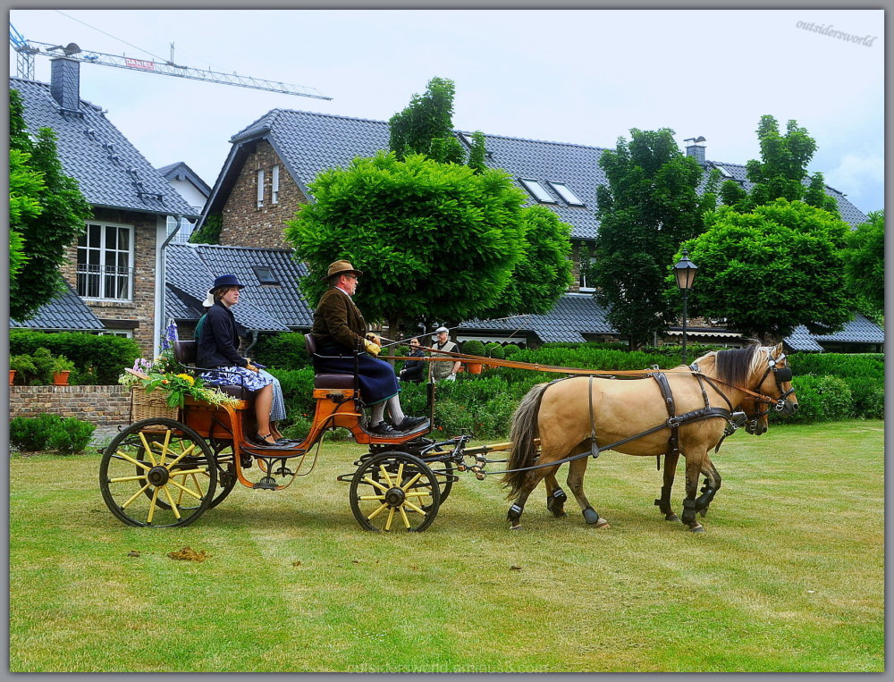 Small horses...therefore, even small carriage...!!