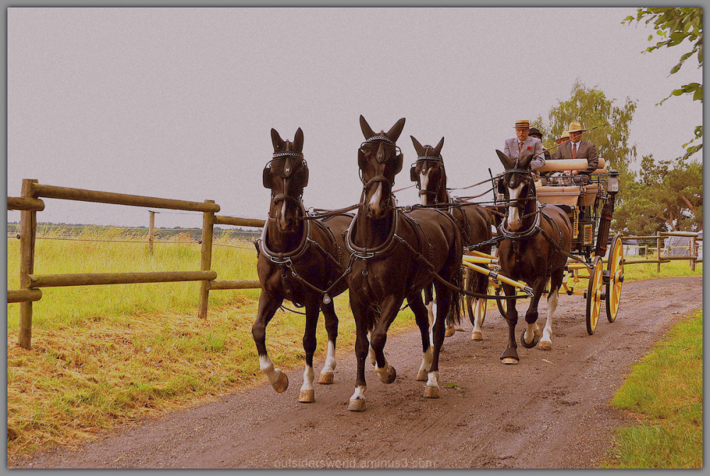 Four horses ... a carriage ...!!!