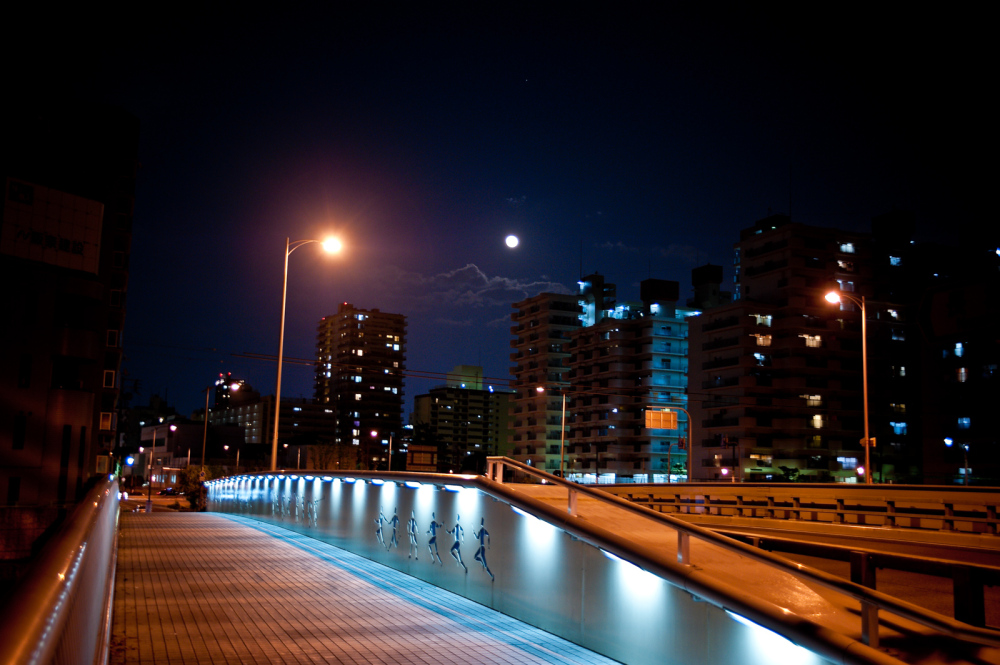 moon and bridge