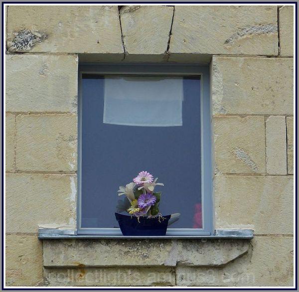 Fenêtre aux fleurs perpétuelles