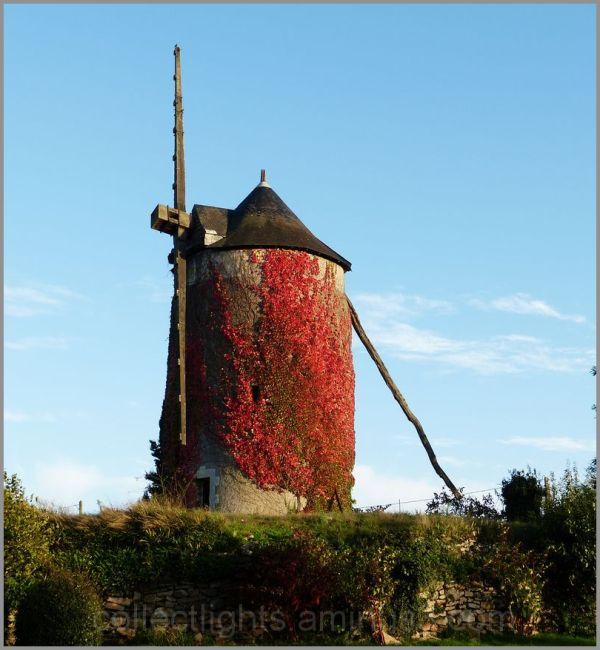 Le moulin n'a plus qu'une aile