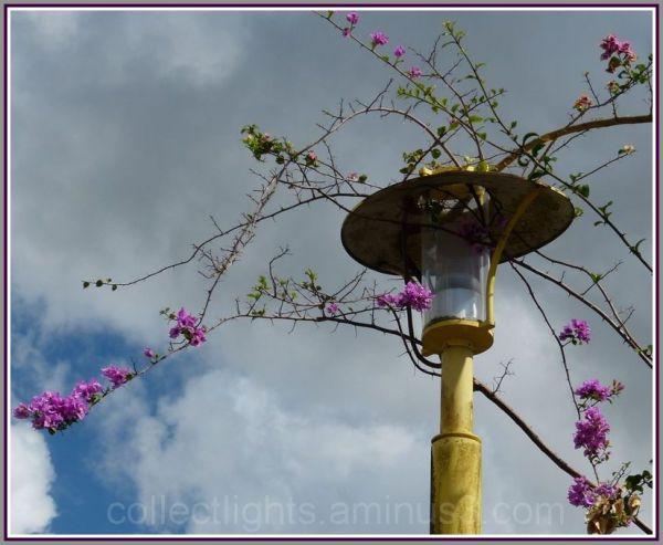 Chapeau fleuri pour lampadaire