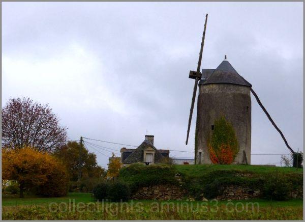 L'automne a choisi le moulin comme toile