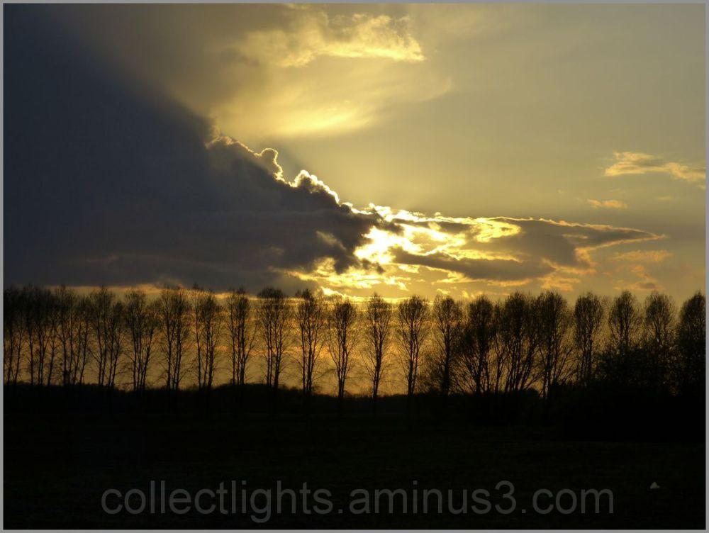 Le rideau de peupliers fait barrage aux nuages