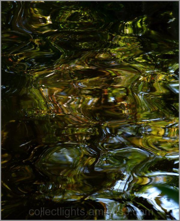En eaux troubles 1/...