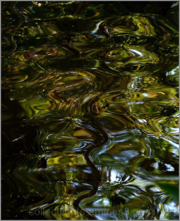 En eaux troubles 3/...