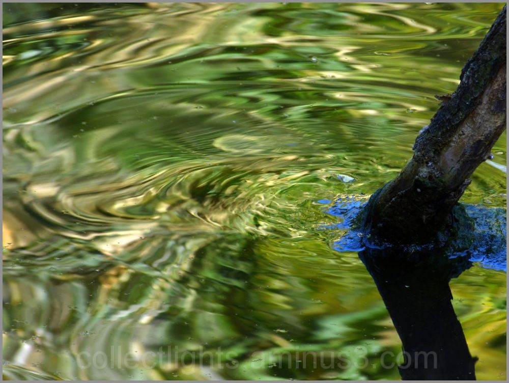 En eaux troubles 4/...