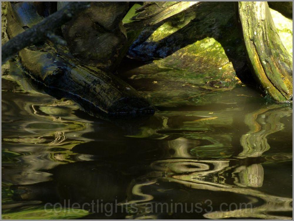 En eaux troubles 6/...