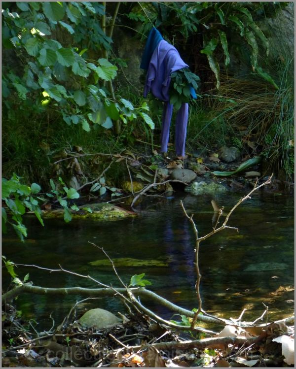 Un plongeon bleu fantomatique