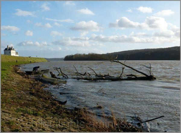 Le vent bouscule les bords de Loire