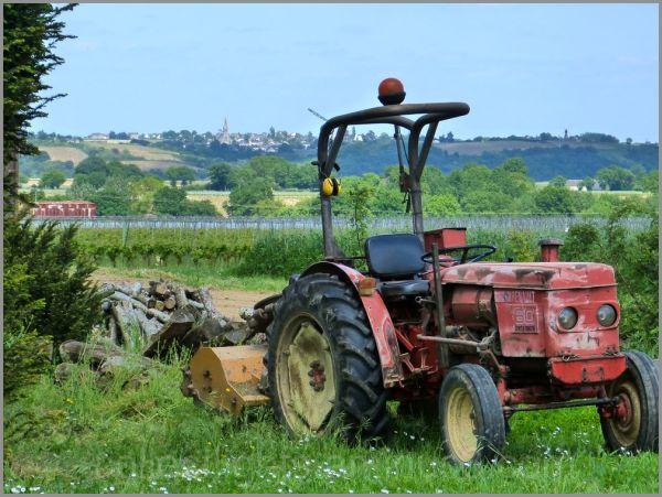 Un tracteur Renault  ancien toujours vaillant