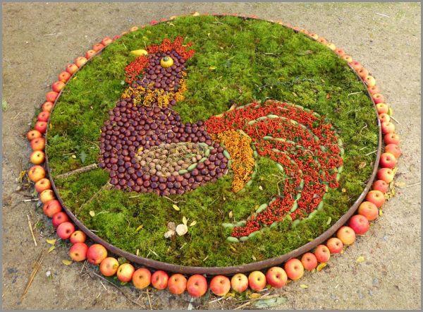 Chant du coq en automne