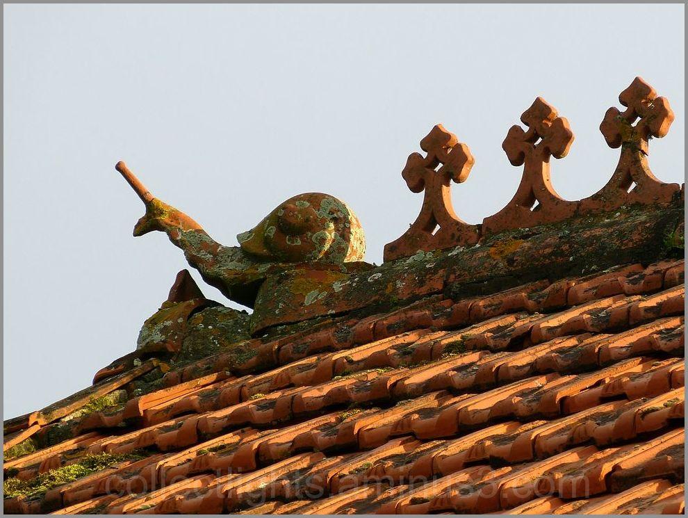 Un escargot qui se baladait ...