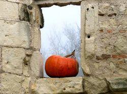 Fenêtre d'automne