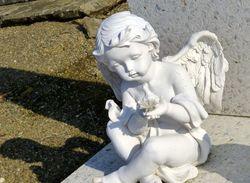 Avez vous croisé cet ange qui veille  ?