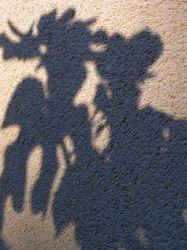Théâtre d'ombres au jardin