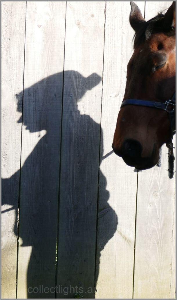 Il la suit comme son ombre