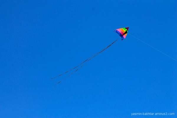 Colourful kite