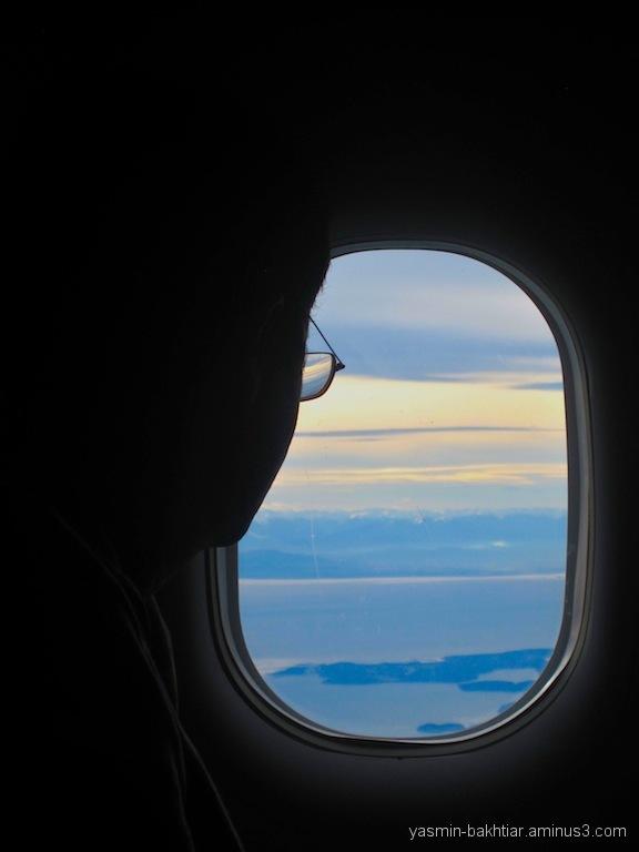 Pacific ocean's view - Flight