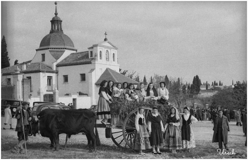 Carreta en las fiestas de San Isidro