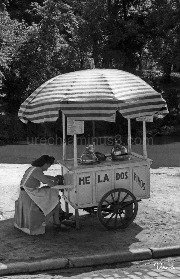 Vendedora de helados finos