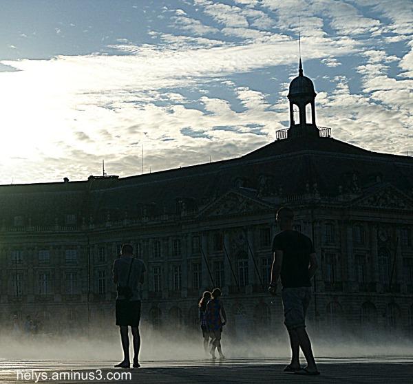 Bain de brume, bordeaux 2012