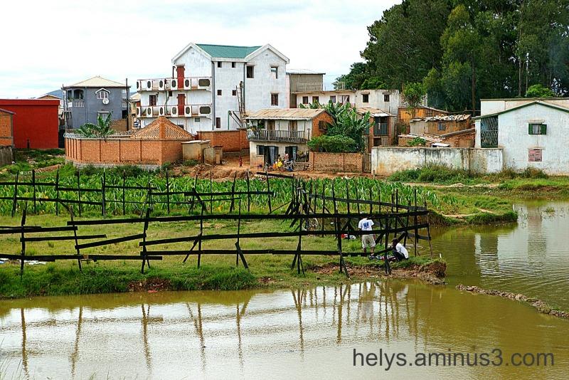 Antananarivo: Betsimitatatra swamps