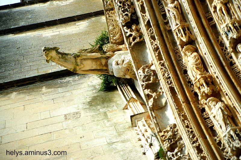 Cathedrale St Pierre F- 17100 SAINTES/6