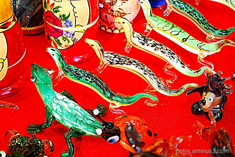 colored lizards