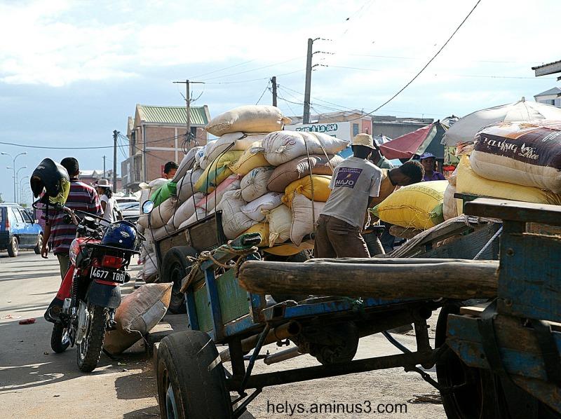 Madagascar: Fetin