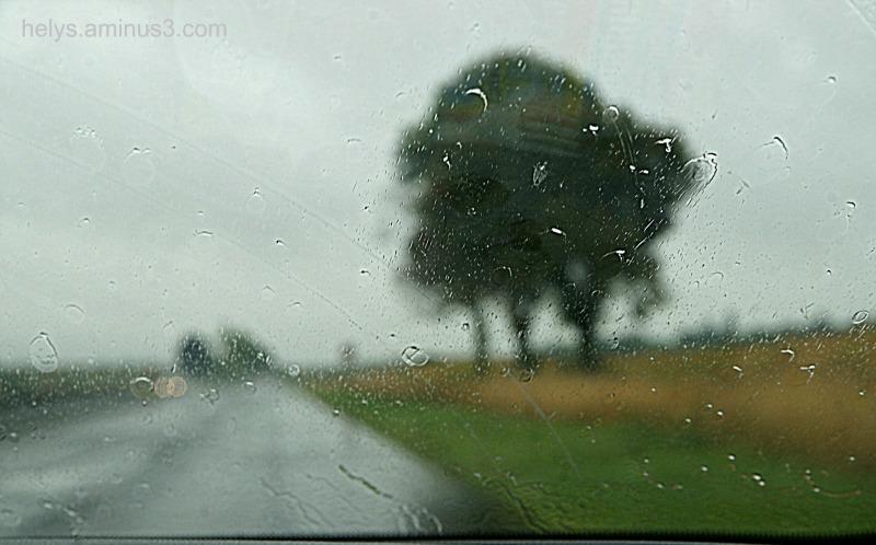 in the rain2