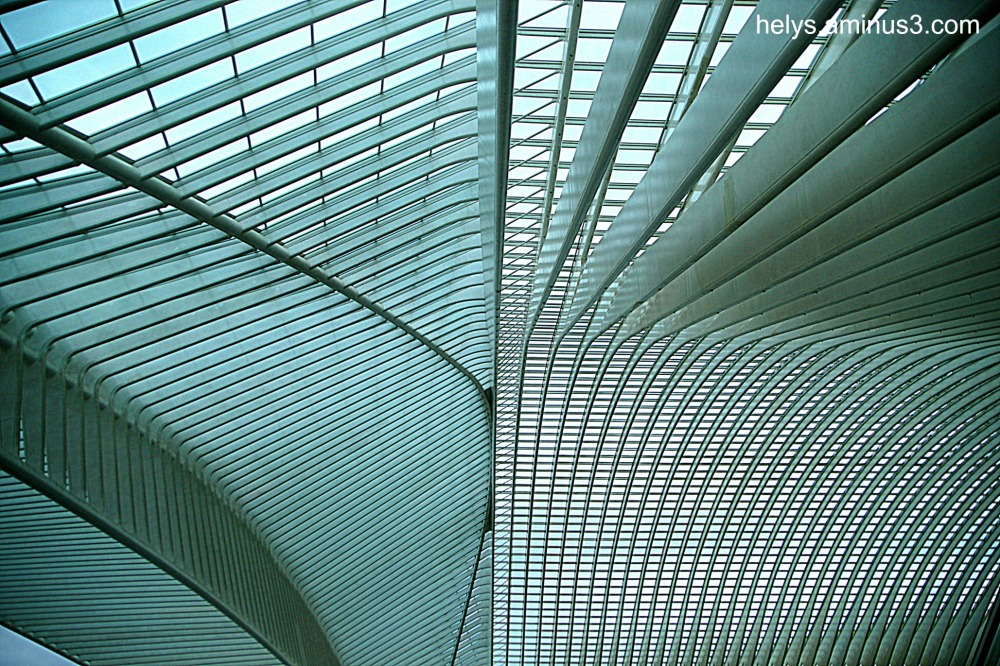 liège guillemins stations6