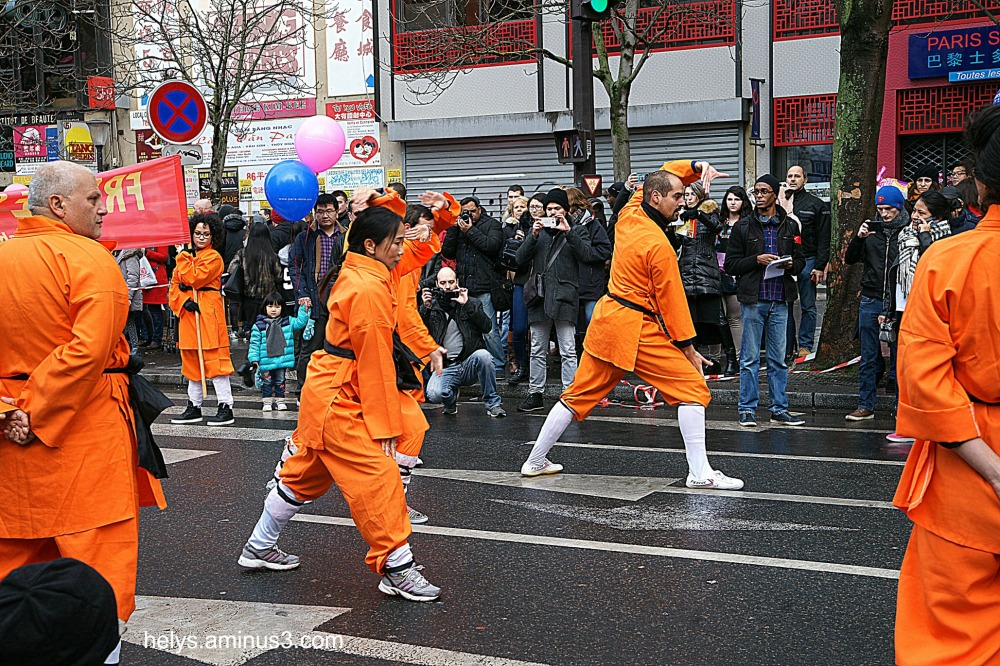 paris 2017: chinese new year parade 2