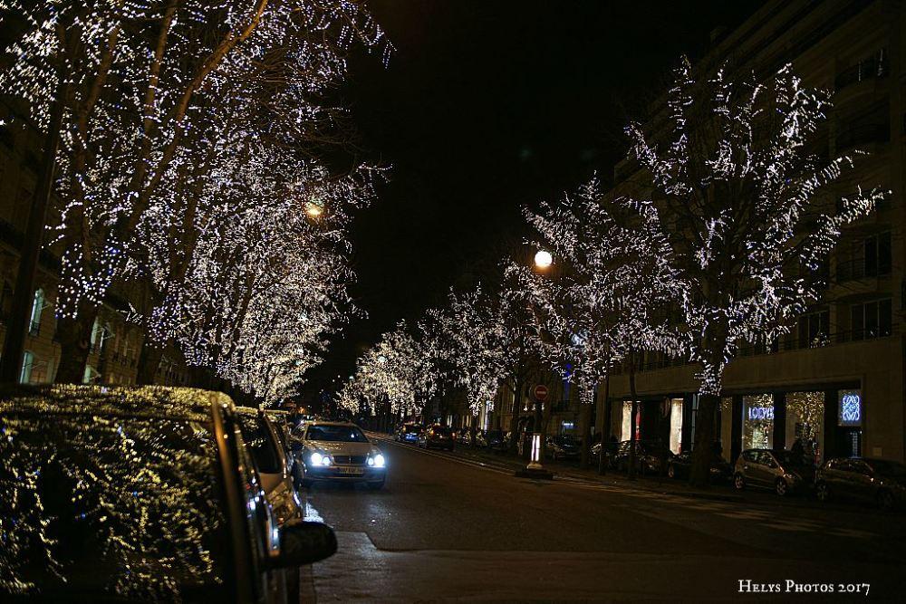 happy new year in paris2
