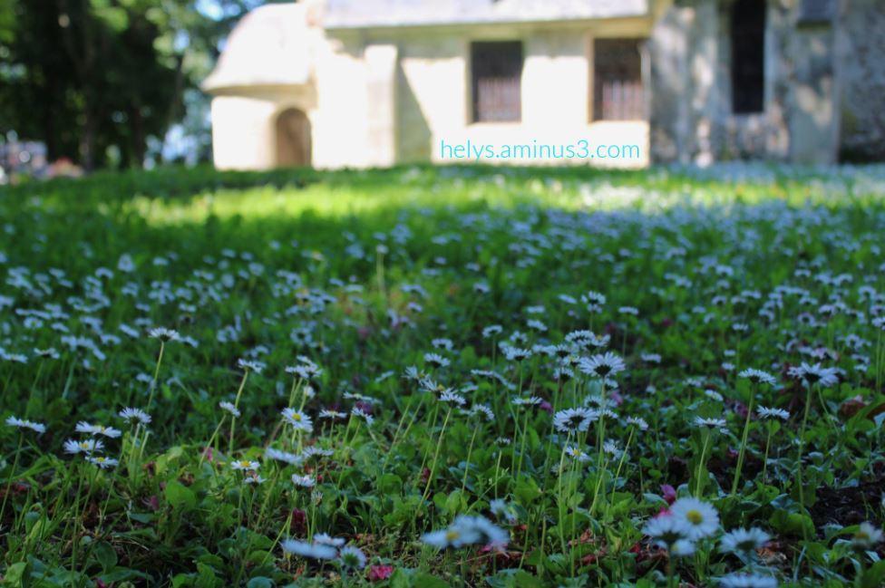 around the little church