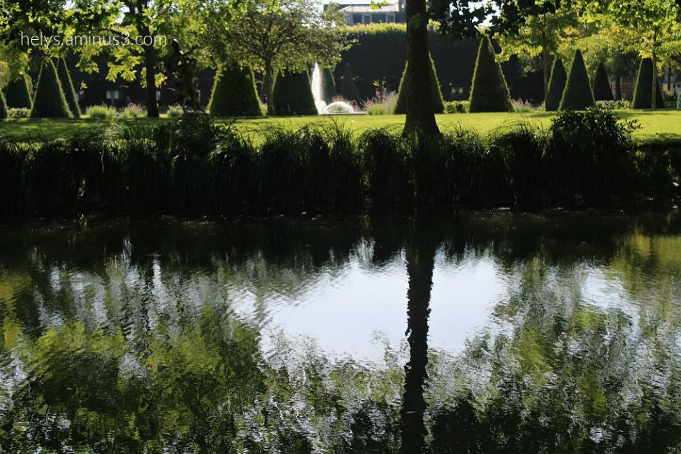2-trees&waters, parc des capucins, coulommiers F77