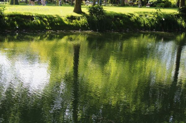 3-Trees&Waters, Parc des Capucins, Coulommiers F77