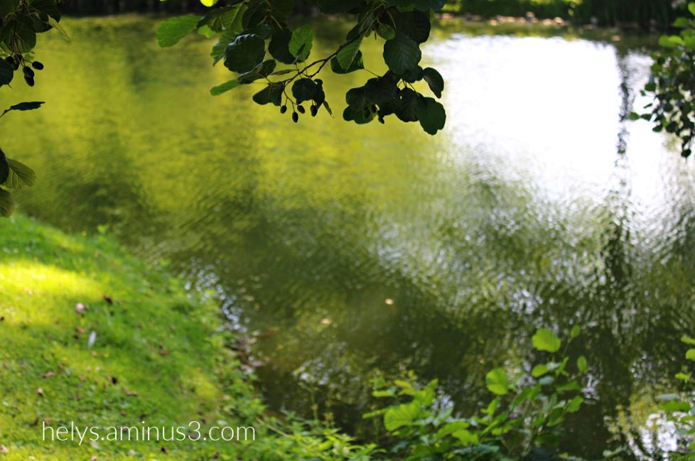 5-Trees&Waters, Parc des Capucins, Coulommiers F77