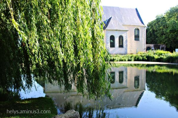 10-Trees&Waters, Parc des Capucins, Coulommiers F7